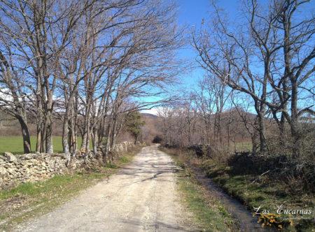 Camino a Braojos en plena Sierra Norte de Madrid